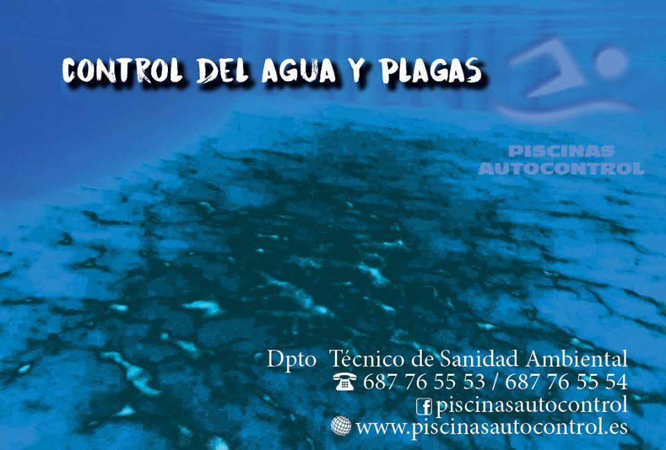 Control de plagas en piscinas de Valencia